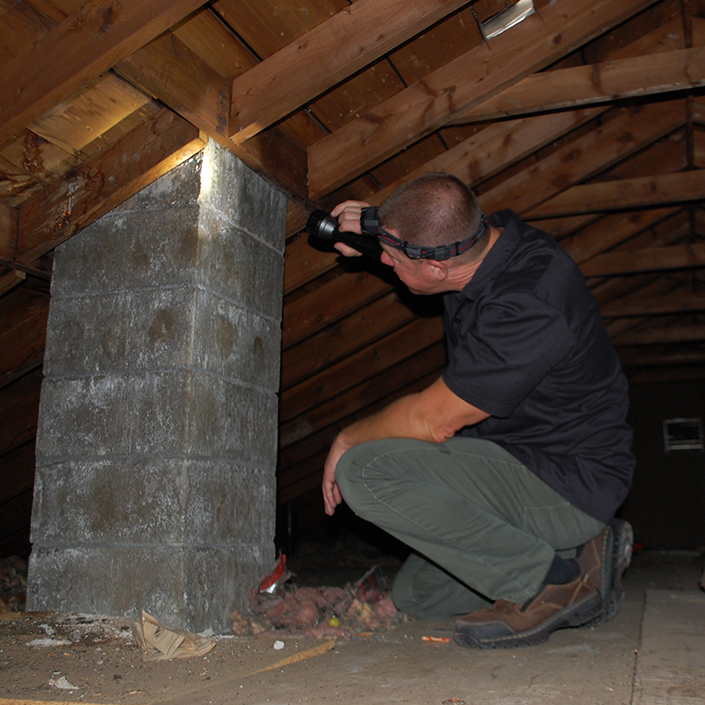 Sellers Home Inspection